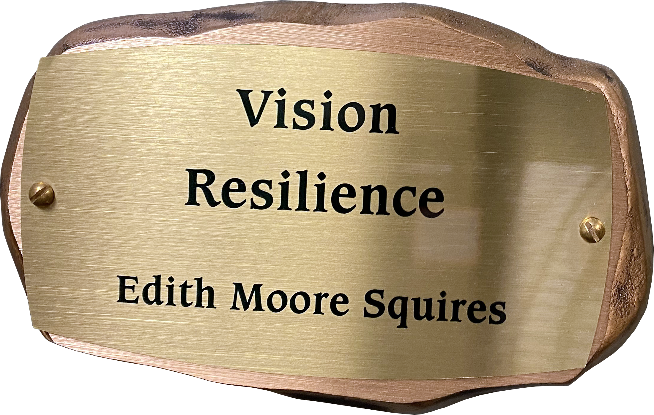 Inscribed bronze plaque in the shape of a rock with text on it reading: Vision, Resilience. Edith Moore Squires